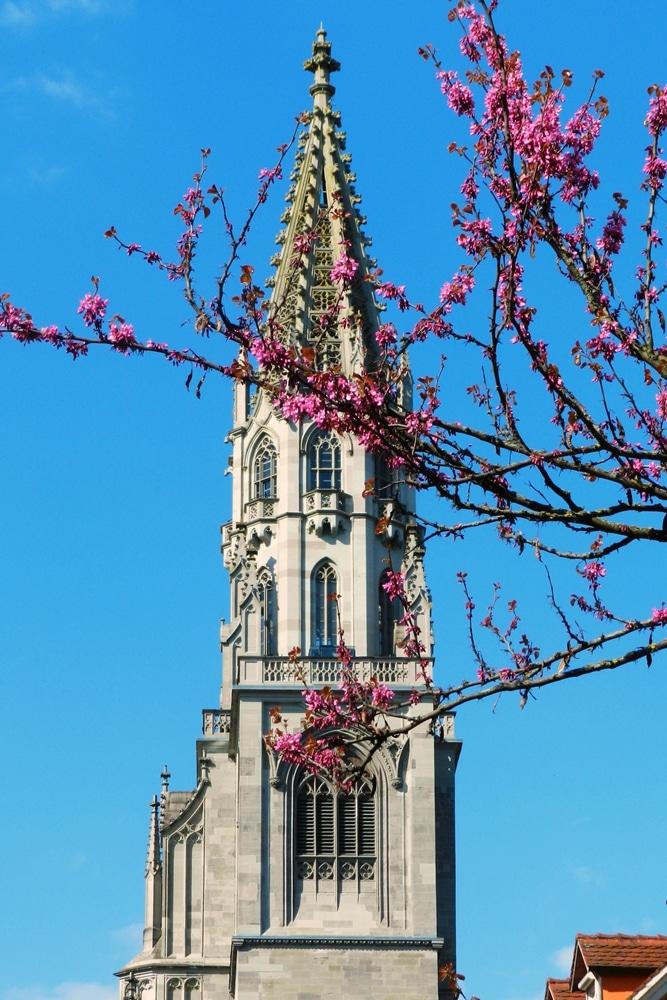 Konstanz Catedral